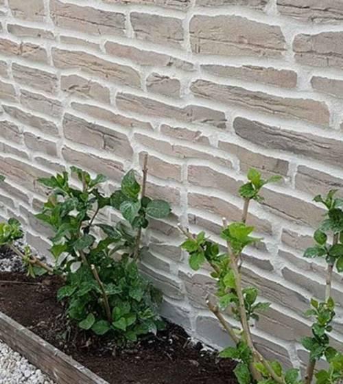 mur d'enclos de jardin