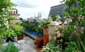 Construire une terrasse en bois à Paris 8