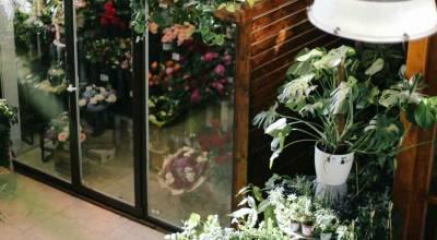 Eclairage magasin de fleurs